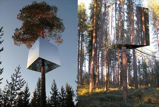 Görünmez ağaç ev