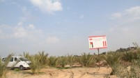 Gazze'de 301 Fidanlık Soma Hatıra Ormanı