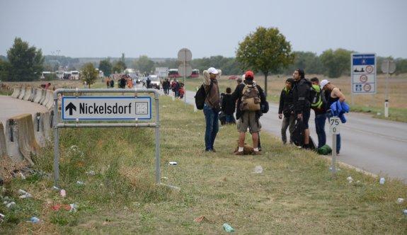 Sığınmacı krizi FPÖ'ye oy kazandırmaya devam ediyor