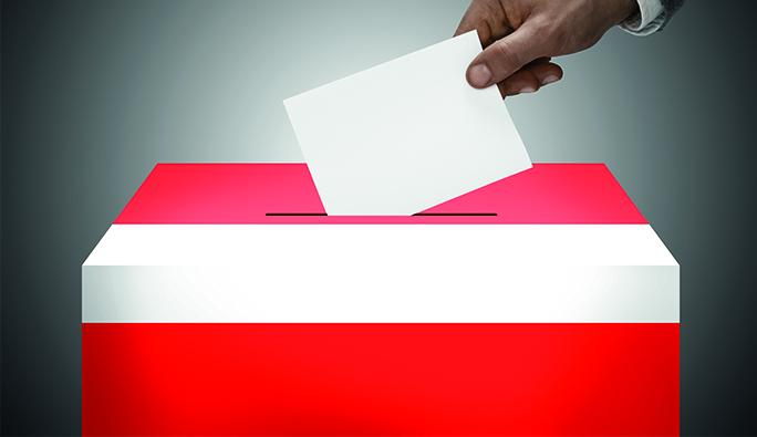 Avusturya Cumhurbaşkanlığı seçimlerine bir soruşturma daha