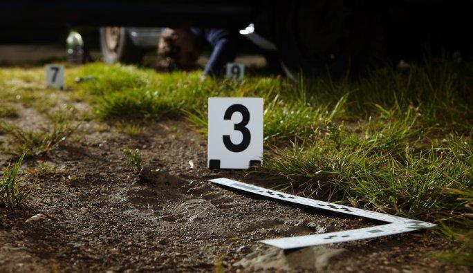 Avusturya: Parçalanmış erkek cesedi bulundu