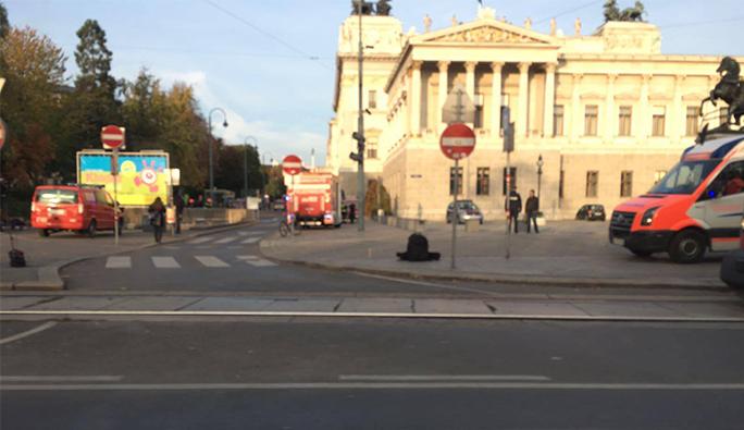 Avusturya Parlamentosu'nda yangın