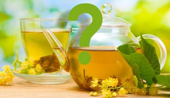 Hangi bitki çayı neye iyi geliyor?