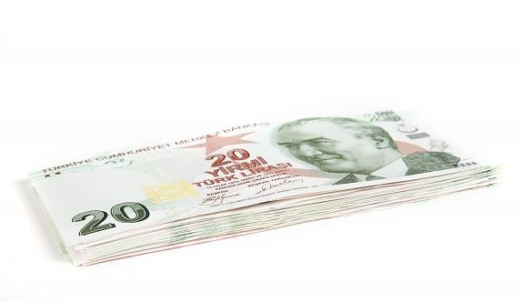 Türkiye'de torununa bakan büyükanneye 1.555 TL maaş