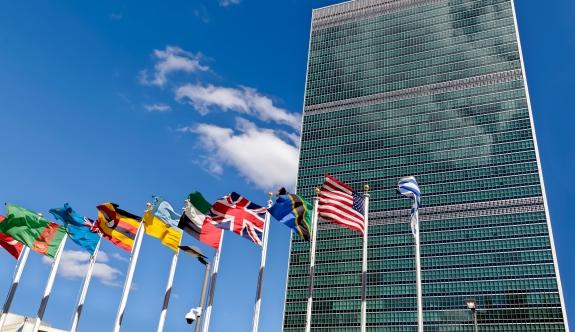 Birleşmiş Milletler: 'Arakan'daki sivil katliamlardan endişeliyiz'