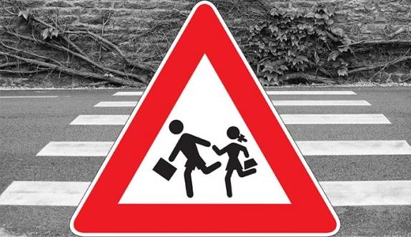 Avusturya | 'Okul çevresi araç trafiğine kapatılsın'