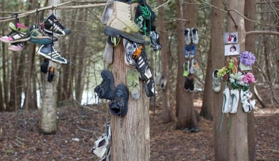 Şaşkına çeviren keşif! Gizemli ayakkabı ormanı!