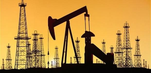 ''Ceyhan'a 30,1 milyon ton petrol aktı''