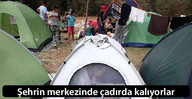 Şehrin merkezinde çadırda kalıyorlar