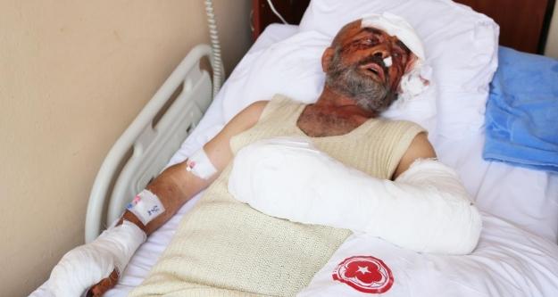 Sivas'ta kurt saldırısı