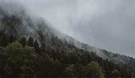 Avusturya'nın o bölgesinde şiddetli fırtına 1 can aldı