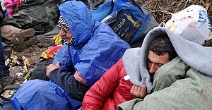 ''Sığınmacılar...