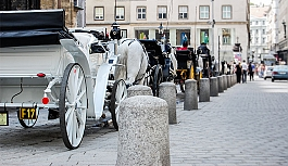 Viyana'nın tarihi...