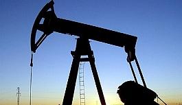 Petrol üreticisi ülkeler...