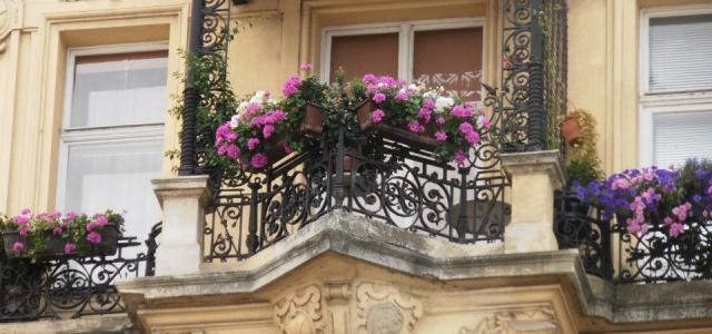Viyana'dan Kareler / Wien