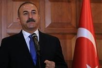 Çavuşoğlu'ndan Avusturya Başbakanına 'Haider-Hofer' göndermesi