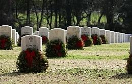 Ölüler artık gömülmeyecek, tarımda kullanılacak!