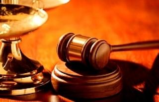 Viyana'da genç çifte 14 ve 22 ay hapis cezası