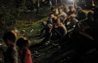 Avusturya'da mülteci karşıtı protesto