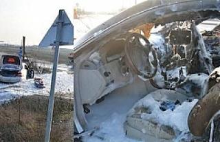 Viyana'da alkollü sürücü aracını kül etti