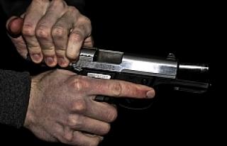 Viyana'da 'Halk Silahlanıyor''