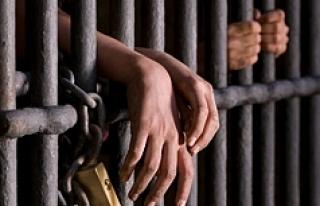 Avusturya'da cezaevlerine operasyon: 'Yok...