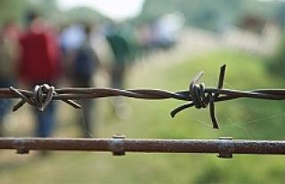 'Avusturya'nın bu kararı, durumu kolaylaştırmayacak'
