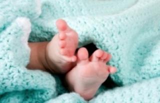 Graz'da 25 yıl önce yaşanan bebek karışıklığı...