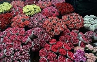 20 ülke, Kadınlar Günü'nü Türk çiçeğiyle...