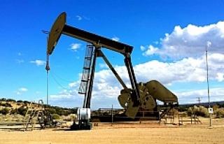 Rus petrol şirketi hisselerini satıyor