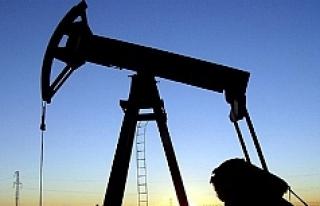 Petrol üreticisi ülkeler Doha'da bir araya...