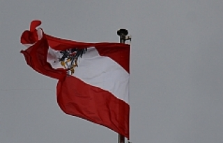 Avusturya'da aşırı sağ suçları zirve yaptı