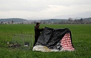 Avusturya'daki bazı sığınmacılar iltica...