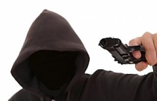 Avusturya'da satılan ruhsatlı silah sayısı...