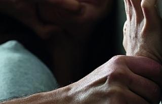 Viyana'da tecavüz: Polis zanlıyı arıyor