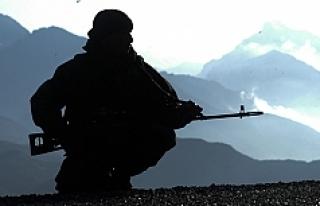 Türkiye, Avusturya'dan hangi silahları alıyor?