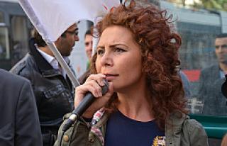 Yeşiller Partisi: 'Kurz, Avusturya'nın Ankara...