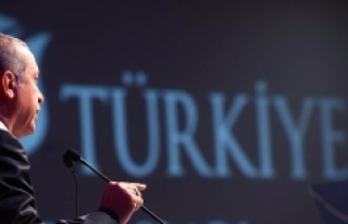 'Erdoğan tüm gerekçelere sahip, çünkü onu...