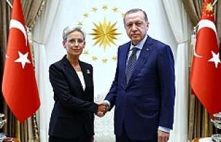 Avusturya'nın Ankara Büyükelçisi, Erdoğan'a...