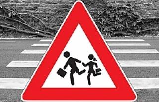 Avusturya   'Okul çevresi araç trafiğine kapatılsın'