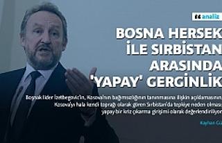 Bosna Hersek ile Sırbistan arasında 'yapay'...