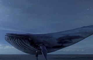 Ebeveynlere çok ciddi uyarı: Mavi balinadan korunmak...