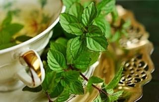 Mevsim hastalıklarından korunmak için bitki çayı...