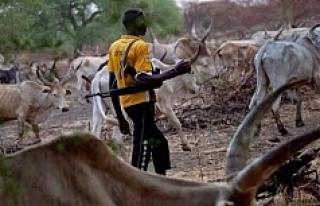 Çobanlarla çiftçiler çatıştı: 20 ölü