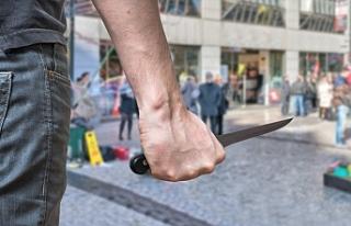 Viyana'da 2 öğrenci arasındaki kavga kanlı...