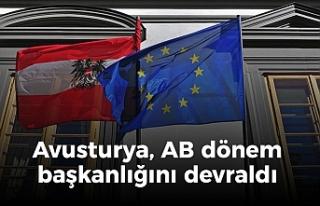 Avusturya, AB ve Türkiye için kritik 6 ay başladı