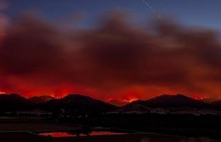 California'daki yangın etkisini artırarak devam...