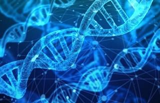 'Dünyanın ilk genetik tasarımlı bebekleri...