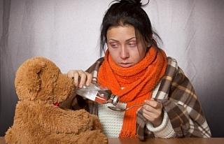 Aşağı Avusturya'da Noelden önce grip salgını