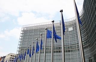 Avrupa Parlamentosu seçimleri: Ülke ülke seçim...
